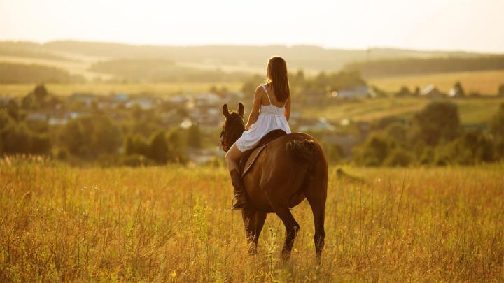 Encuentra el mejor lugar para las carreras de caballos en Newmarket