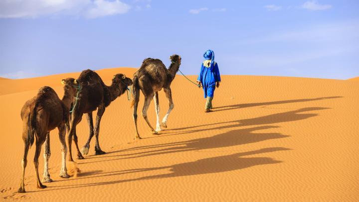 Encuentra el mejor lugar para el desierto en Merzouga