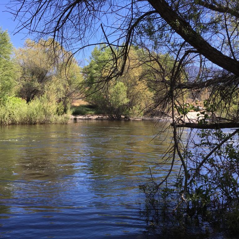 Traveler Photo Of Three Rivers