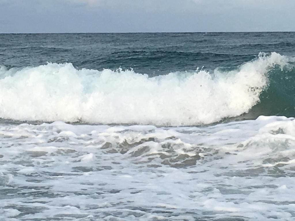 Sand Dune Shores by VRI Resort, Palm Beach Shores, FL - Booking.com