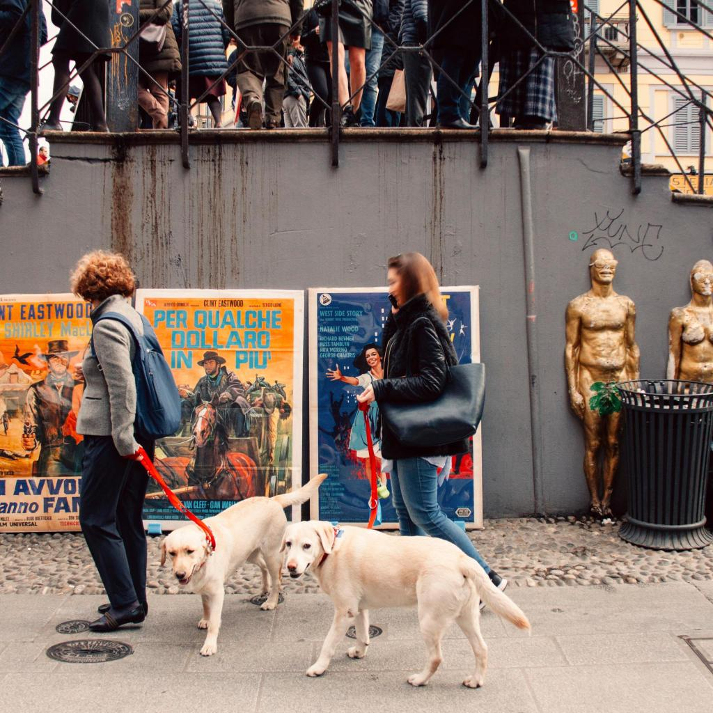 Two women walk their dogs past classic movie posters