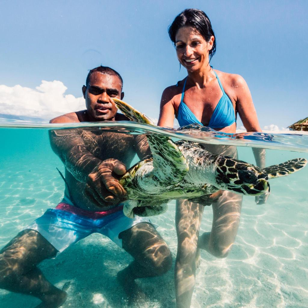 Lucky guests may see one of the turtles that call the island home