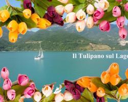 B&B Il Tulipano sul Lago