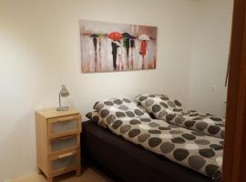 Comfortble apartment in Reykjavík, Reykjavik