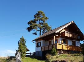 Almhütte in Kärnten, Goding
