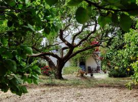 Margouno Eco Cottage, Engares