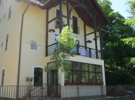 Vila Sangeorz-Bai, Valea Borcutului