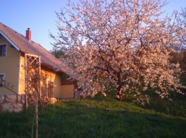 Vineyard Cottage Lisec Relaxation, Dobrnič