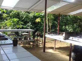 Bolita Rainforest Hostel and Cabinas, Dos Brazos