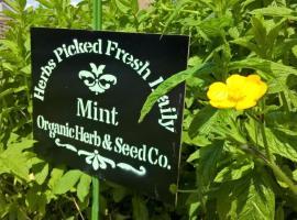 Mint Leaf Cottage Bruton, Bruton