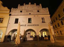 Hotel Bílý Koníček, Třeboň