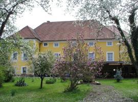 Guest House Čater, Laško