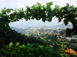 Il mandarino, Vallebona