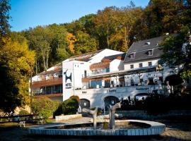 Hotel U Kozicky, Teplice