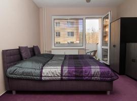 Apartment Lidman n°1, Hazlov