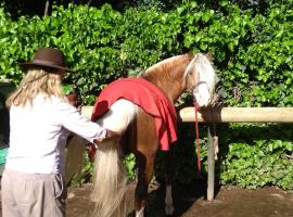 Entre caballos y vides, Maipú