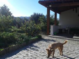 Quinta de São João, Poios