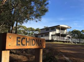 Echidna on Bruny, Barnes Bay