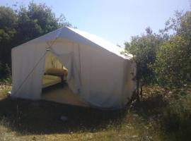 مخيم راسون السياحي, Ajloun