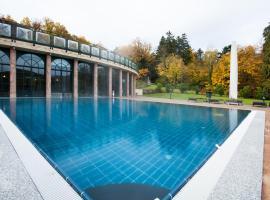 Les Violettes Hotel & Spa, Jungholtz