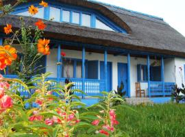 Casa Dintre Salcii, Uzlina