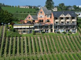Hotel Des Vignes Restaurant Du Pressoir, Remich