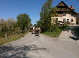 Reitbauernhof Ferner, Mühlen
