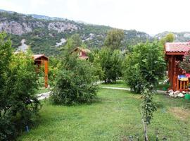 Villaiz, Cıralı