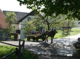 Tourist Farm Ljubica, Поляне-над-Шкофьо Локо