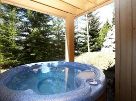 Aloha Whistler Accommodations - Upper Village & Benchlands