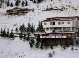 Snow Patrol Lodge