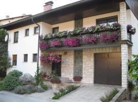 Apartment Žvab, Bohiņa