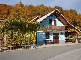 Vineyard Cottage Meglic, Trebnje