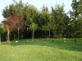 Green World, Zugdidi