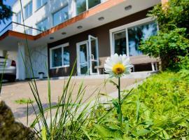 Hotel Dom Tvorchestva Baikal, Listvyanka