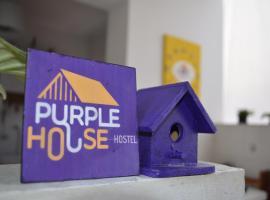 Purple House Hostel, Sao Paulo