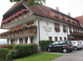 Hotel Gasthof Straub, Lenzkirch