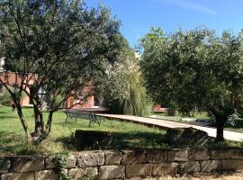 De la suite dans les oliviers, Gallargues-Le-Montueux