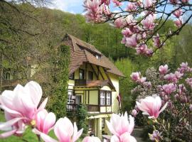 Lettisches Haus, Freiburg im Breisgau