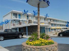 Blue Palms Resort, Wildwood