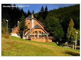 Horský hotel Vidly, Karlova Studánka