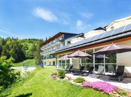 Belchenhotel Jägerstüble, Aitern