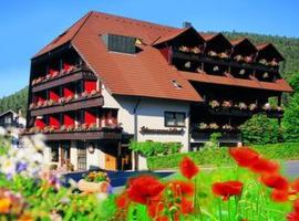 Hotel Schwarzwaldhof, Enzklösterle