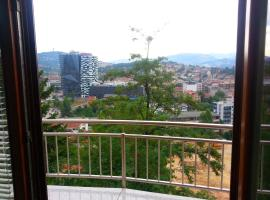 Beautiful View Of Sarajevo Center