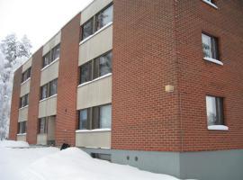 Apartment Vanhatie, Puhos