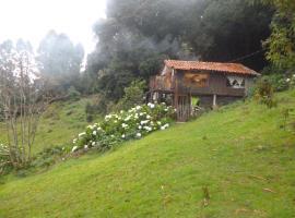 Lagunillas Del Poas, Poasito