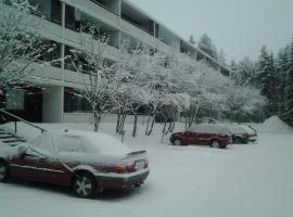 Valkea Tarina Apartment