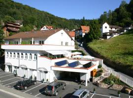 """Fewo und Apartments """"Zum Löwen"""" Heidelberg - Ziegelhausen, Heidelberg"""