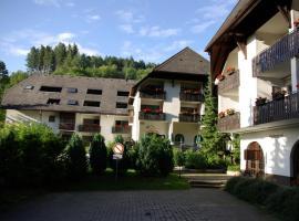 Berghotel Schwarzwaldblick, Triberg