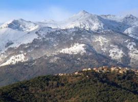 Casa Bonino, Prunelli-di-Fiumorbo